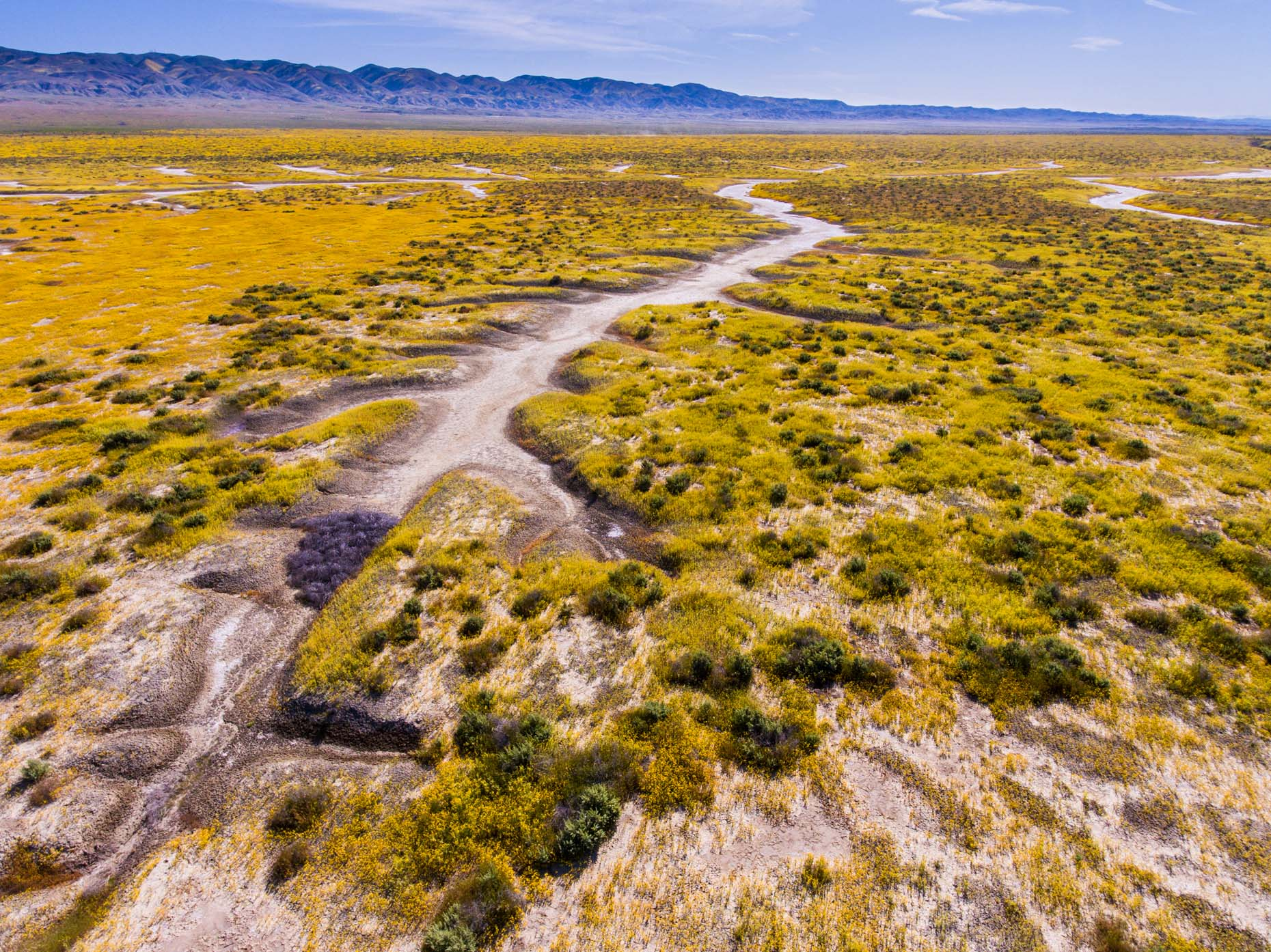 Aerial_Carrizo_Plains