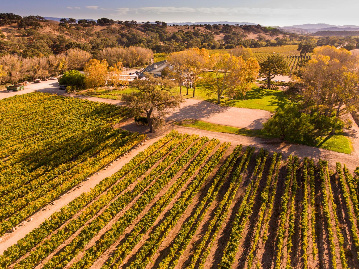 Aerial_Fess_Parker_Winery