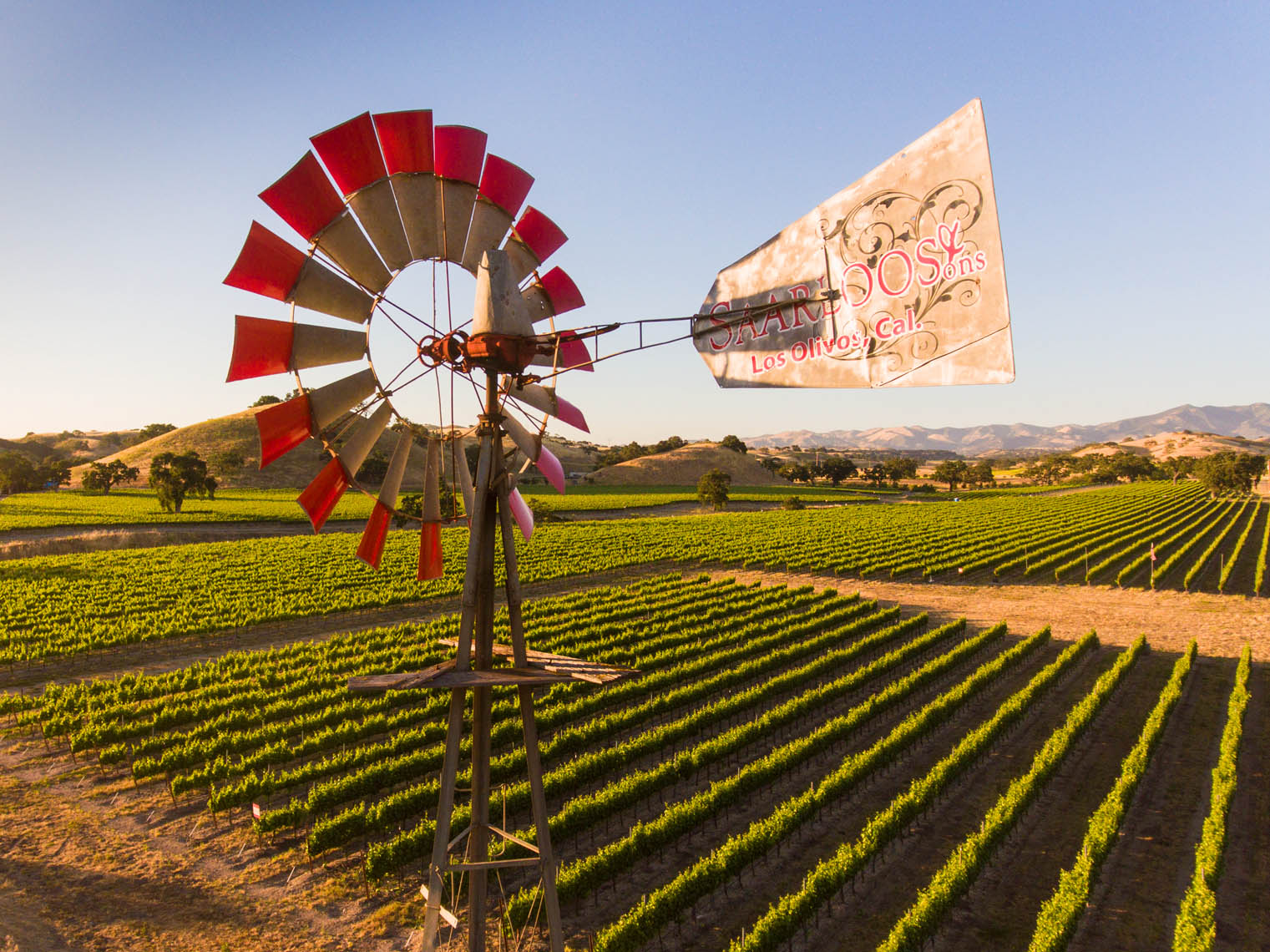 Aerial_Vineyard_Windmill