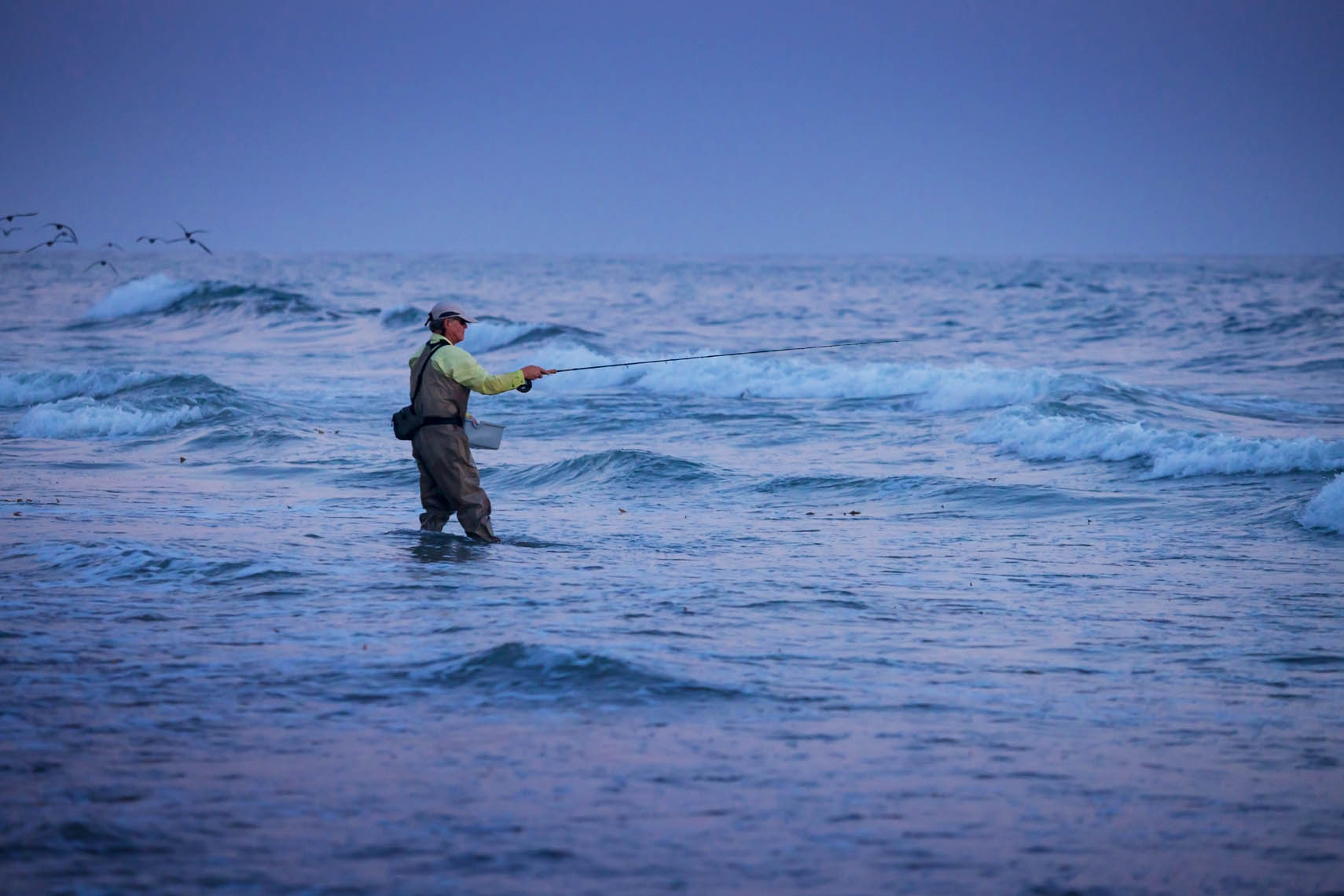 fly fishing for perch in the surf